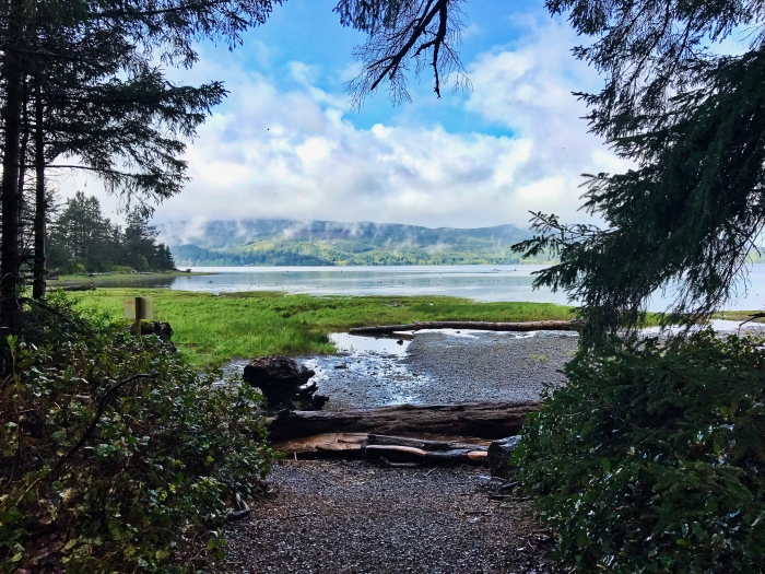 IMG 3595 - Tillamook: A Drive Along the North Oregon Pacific Coast
