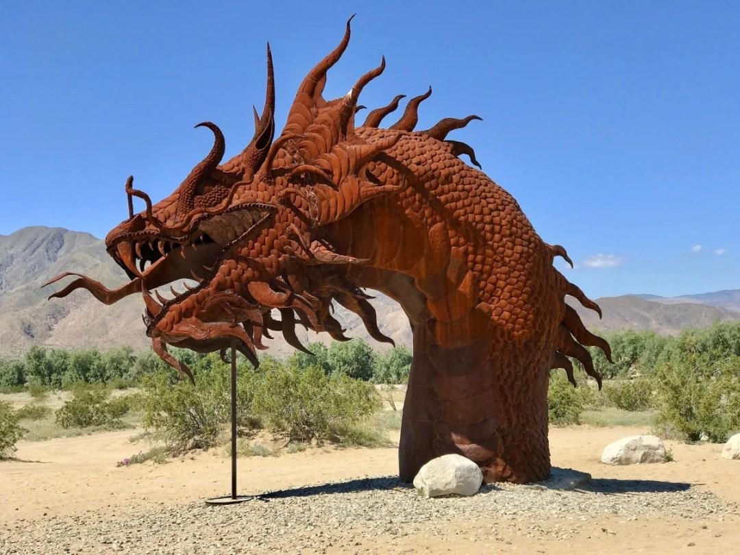 IMG 2247 - Wildflower Chasing at Anza-Borrego Desert State Park California
