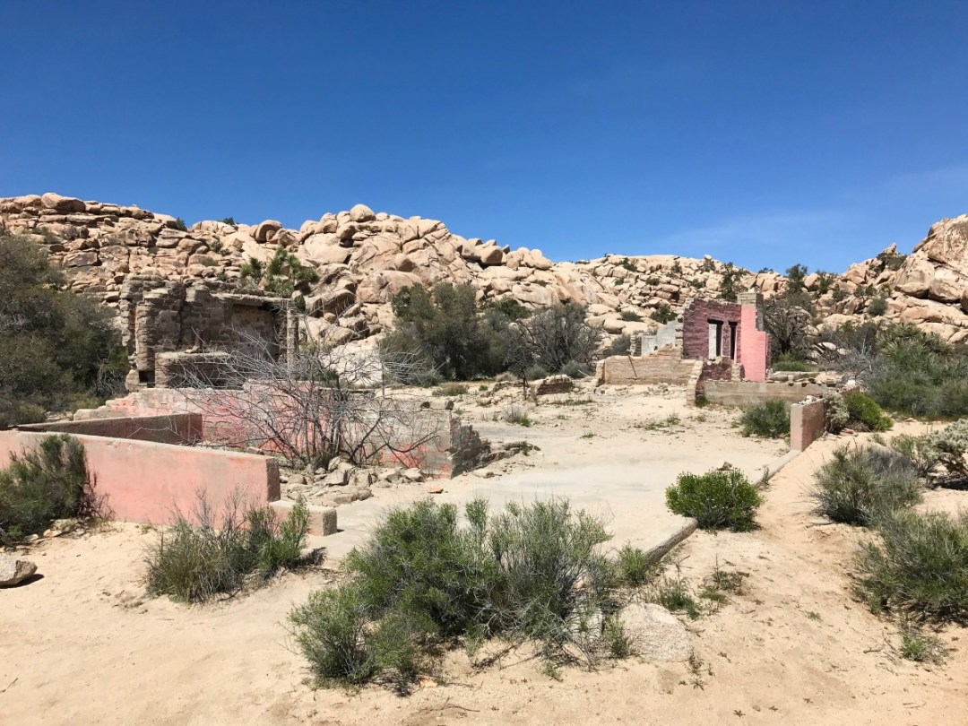 IMG 2485 - Best Hikes in Joshua Tree National Park on a One-Day Trip