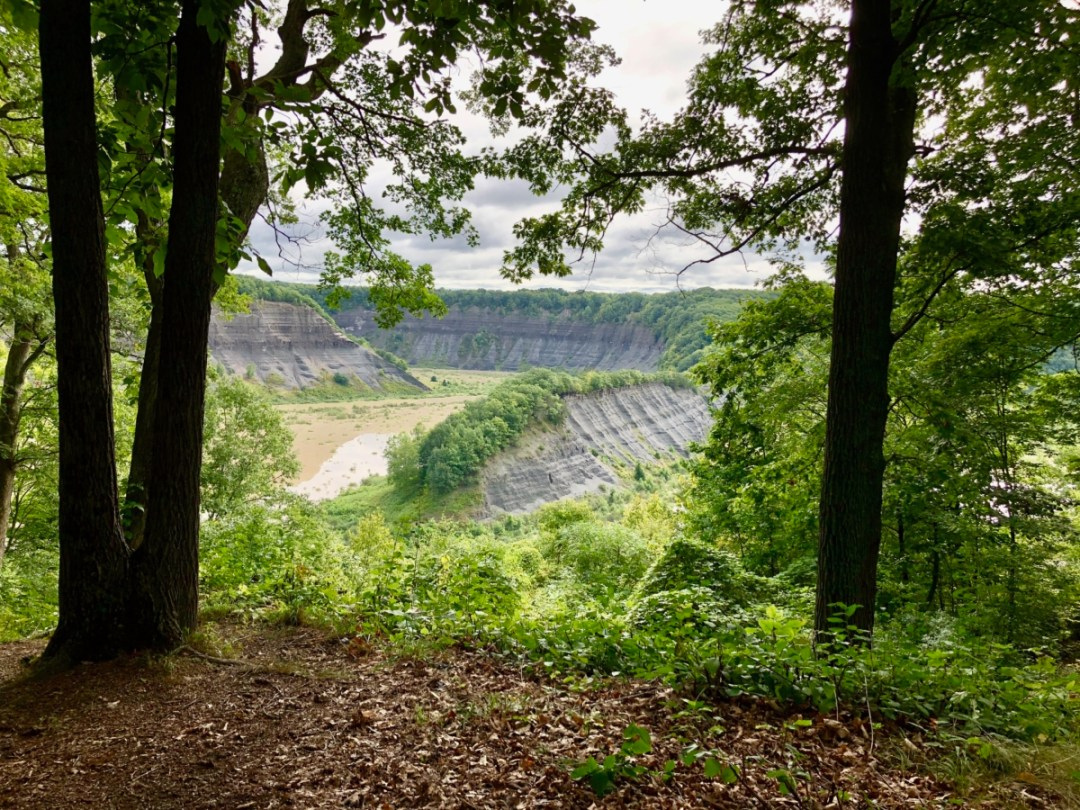hogsback overlook - Things to Do in Letchworth State Park
