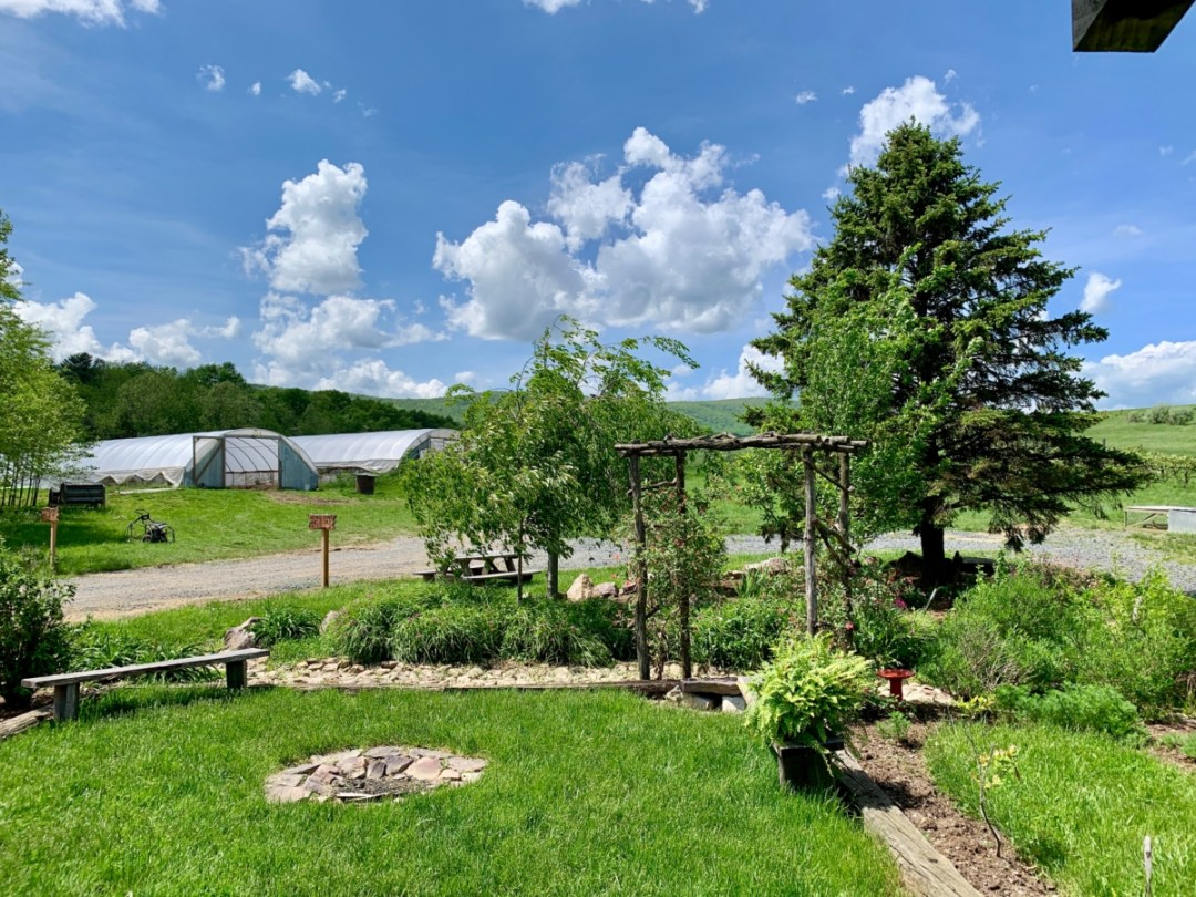 Polyface Farm Garden - Fun Things to Do in Staunton Virginia