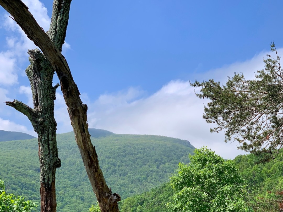 Humpback Mountain - Visit Waynesboro Virginia: Gateway to the Shenandoah Valley