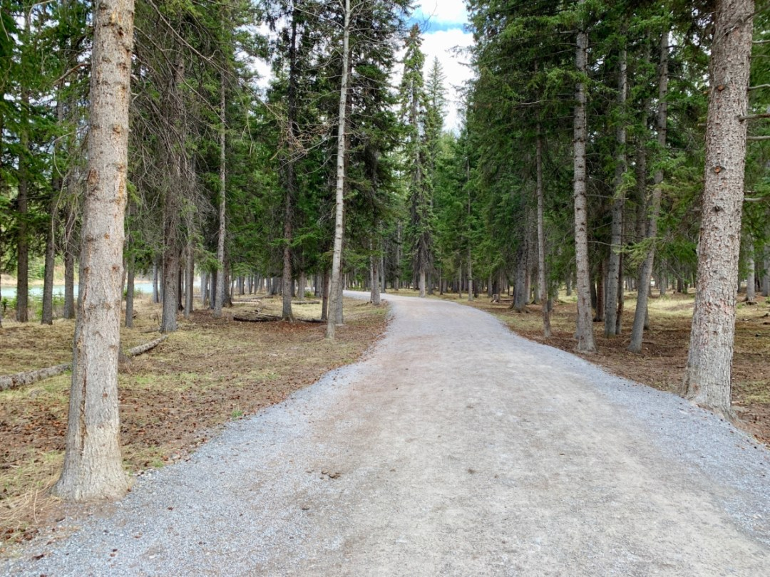Bow River Trail - The Best Sites & Activities for a Town of Banff Adventure