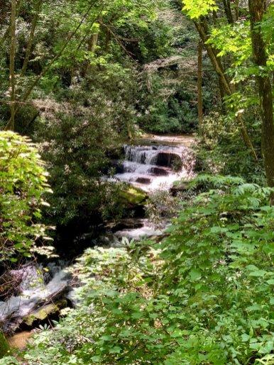 Lower Wildcat Creek Falls