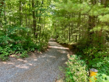 Road to Hickey Gap Campground