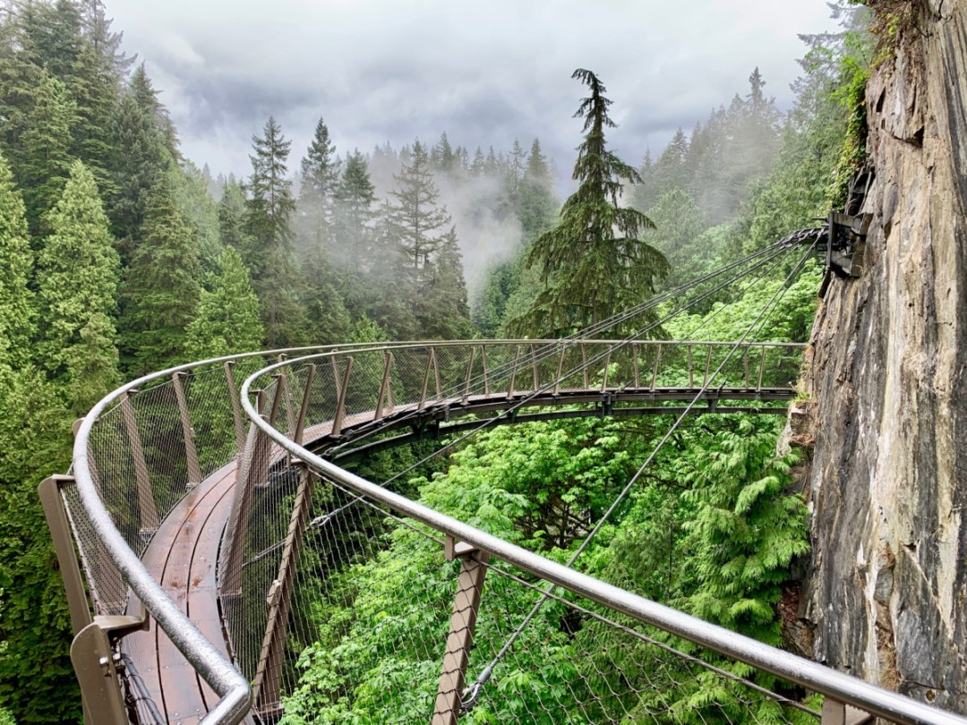 Capilano Canyon Lookout - Tour Capilano Suspension Bridge Park and See Vancouver in a Day
