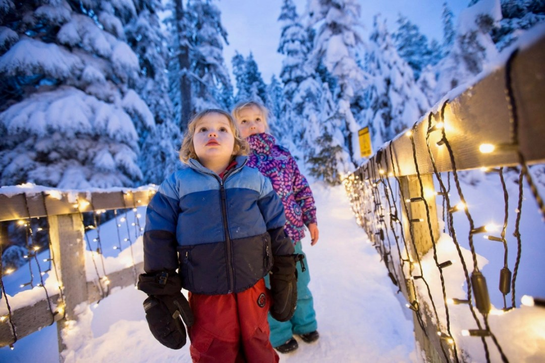 Grouse Mountain Winter Children - Tour Capilano Suspension Bridge Park and See Vancouver in a Day