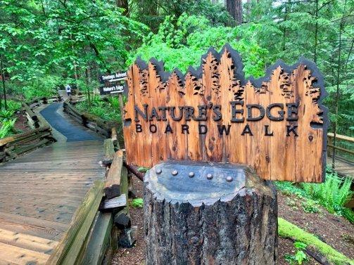 Nature's Edge Boardwalk at Capilano Suspension Bridge Park