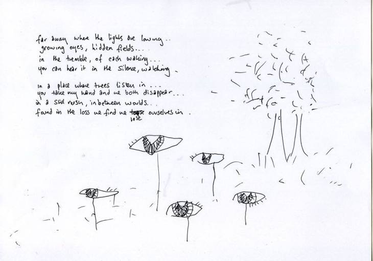 Stephen Lawrie Hidden Fields