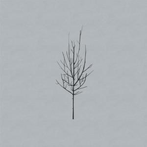low album cover