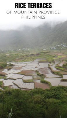 rice terraces mt province philippines