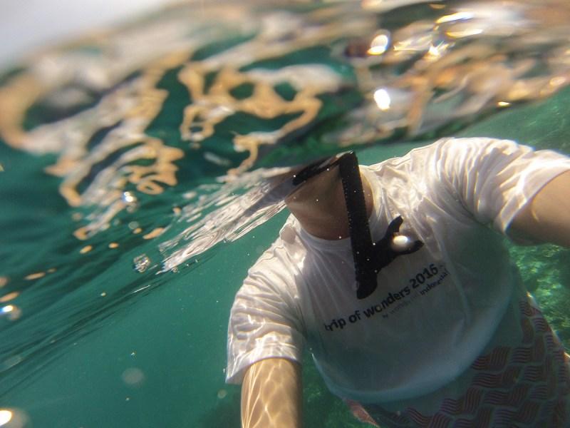 Trip of wonders tshirtunderwater