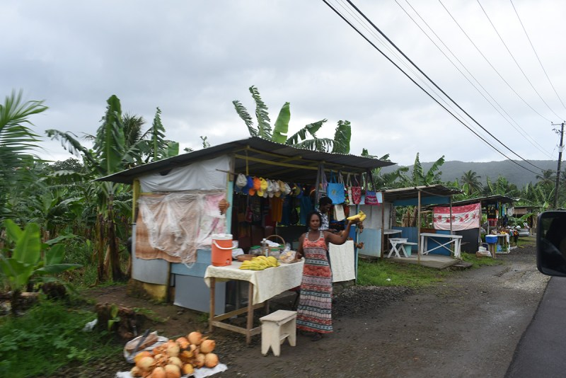 Street Vendors along the main highway of St Lucia