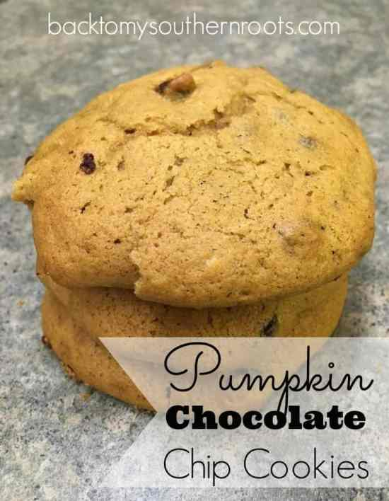 If you're looking for the perfect combination of chocolate and pumpkin, pumpkin chocolate chip cookies are the way to go. Don't miss out on this amazing pumpkin flavor-filled recipe.