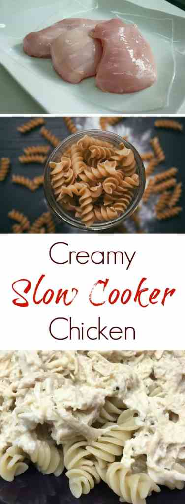 Creamy Slow Cooker Chicken is a super easy recipe that will fill up the heartiest of eaters in your house. It's a mix of pasta, chicken, and cream cheese. Throw it in the slow cooker and it's ready to serve in just a few hours.