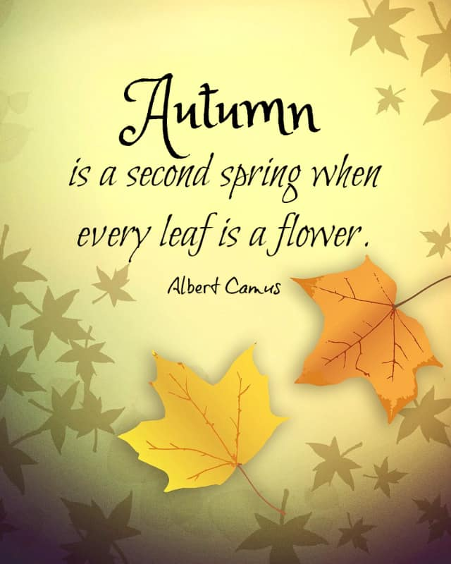 autumn-is-a-second-spring