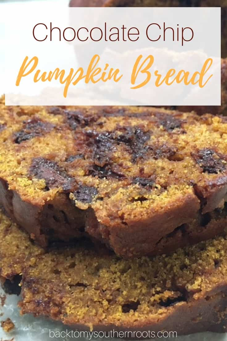 I love pumpkin. This is a super easy chocolate chip pumpkin bread recipe. It is such a moist and delicious bread that you'll be going back for seconds.