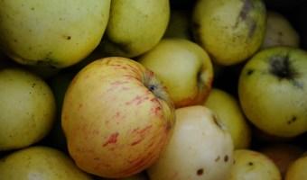 Instapot Applesauce