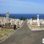 Waverley Cemetery Bronte