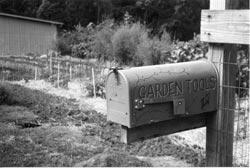 A mailbox in the garden.