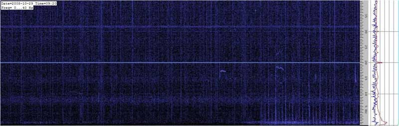 Spectrogram of the Schumann resonances #5
