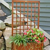 Trellis Box Planter
