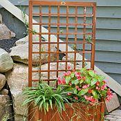 Trellis Box Planter