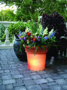 Solar Lighted Planter