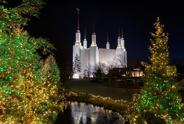 mormon temple in washington dc with xmas lights - Dc Christmas Lights