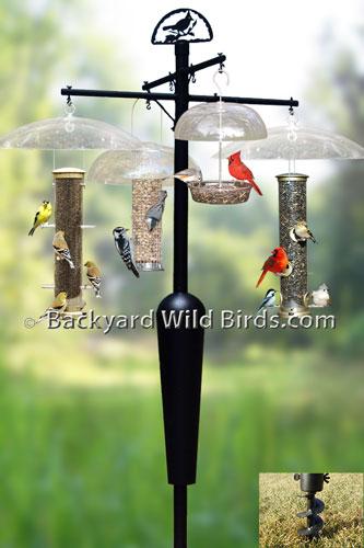 bird house pole plans