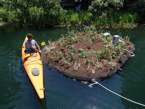 floating_wetland2
