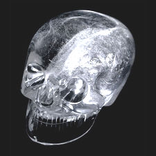 The British Museum Skull