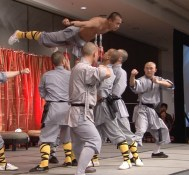 The Martial Arts Show