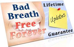 Lifetime Updates Guarantee