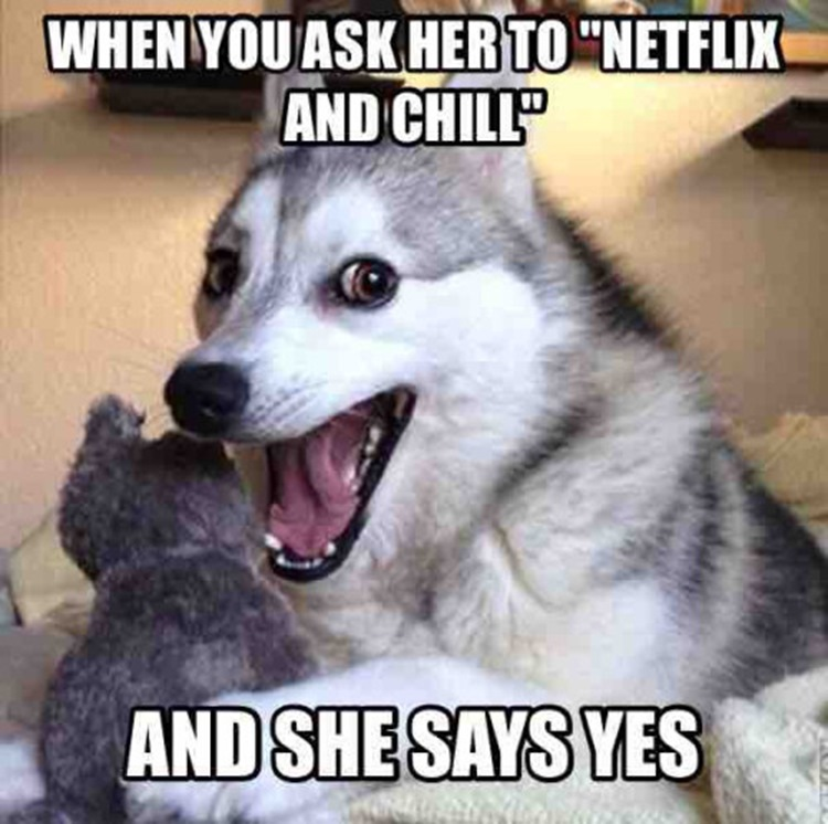 Hilarious Netflix And Chill Images (20 Photos) 2