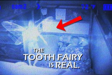 tooth fairy caught on camera