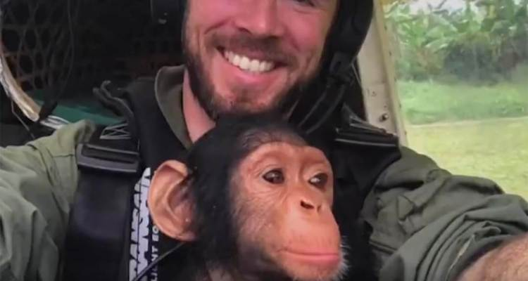 Rescued Baby Chimp Helps Out on Flight over Africa 1