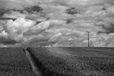 Over the Hill - Craig Gorham - November 2015