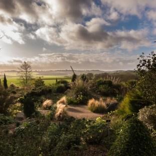Hyde Hall Dry Garden Andy Webb