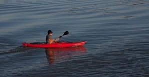 Red Canoe Tony Curd 2017