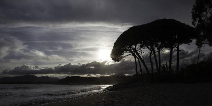 Evening stoll along the beach - Bob Braine