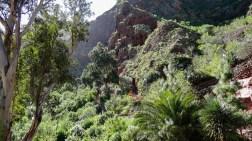 High on a mountain path - Dave C