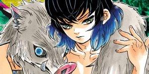 Demon Slayer - Kimetsu no Yaiba