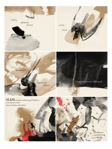 Raptor: A Sokol Graphic Novel, anteprima 02