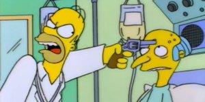 Chi ha sparato al signor Burns simpson
