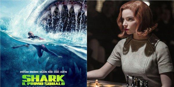 Shark - IL Primo Sqaulo la regina degli scacchi netflix