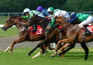 luck corsa cavalli