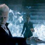 """Animali Fantastici 3: J.K. Rowling sta riscrivendo lo script, Kevin Tsujihara sulla """"nuova formula"""""""