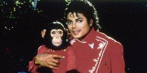 Bubbles Michael Jackson