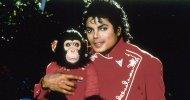 Bubbles: Netflix si aggiudica il progetto di Taika Waititi sullo scimpanzé di Michael Jackson